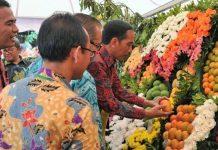 Jokowi Lihat buah